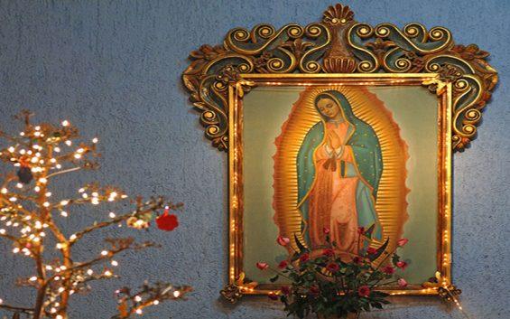 ĐTC sẽ cử hành lễ Đức Mẹ Guadalupe và ban ơn Toàn xá