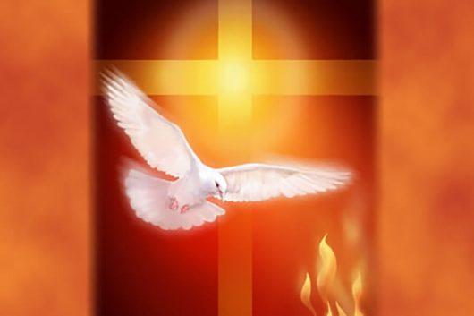 Chúa Thánh Thần, ơn Chúa Thánh Thần, hoạt động của Chúa Thánh Thần