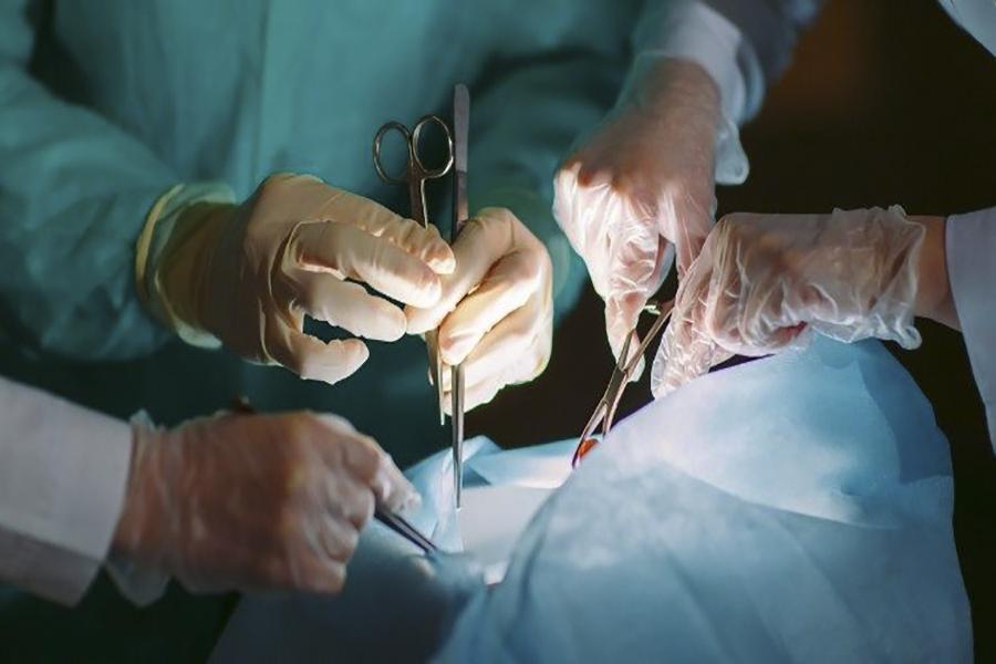 Tự nguyện hiến tặng, ai có thể hiến mô tạng, tri ân người hiến mô tạng
