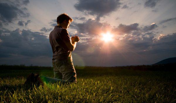 xin con tha thứ, lời thú tội của người cha, xin ơn tha thứ