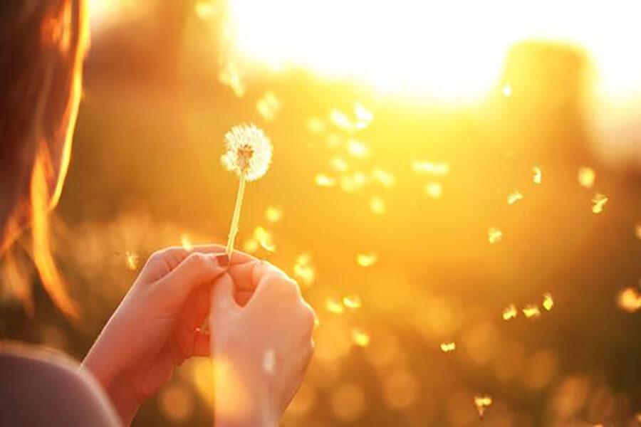 kỳ diệu sự tử tế, sự quan phòng kỳ diệu của Thiên chúa, Thánh lễ Misa sự kỳ diệu
